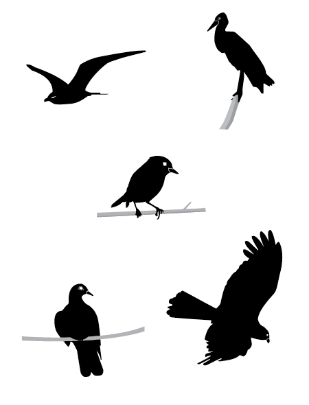 5 birds silhouette vectors