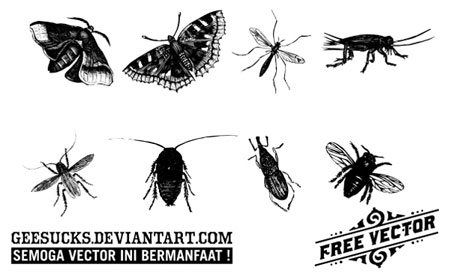insects vectors