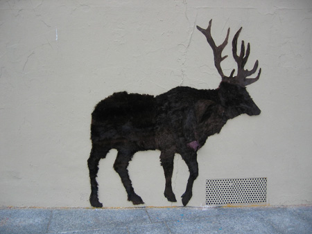 Fur Coat Moose