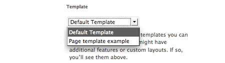 how to add template option in page attributes in wordpress