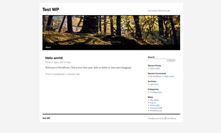 What's coming up in WordPress 3.0