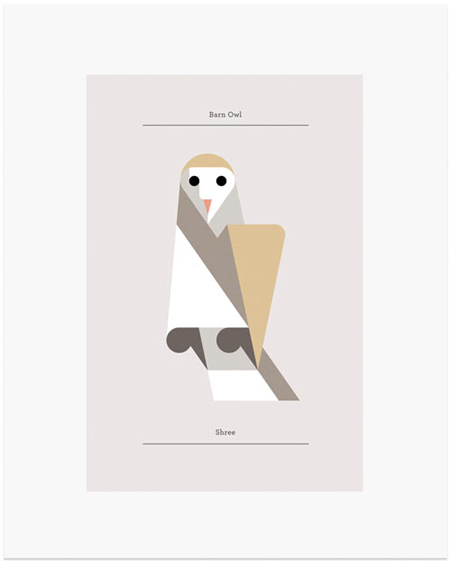 Owls by Josh Brill