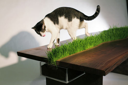 Planter Table by Emily Wettstein