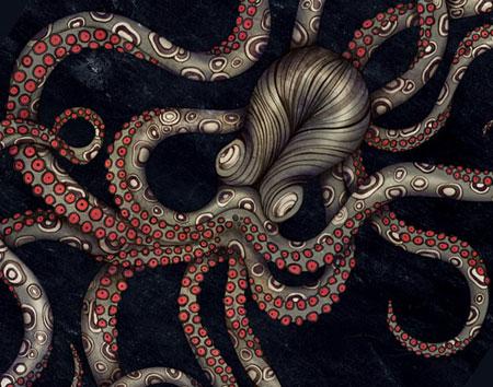 Octopus by Sarah Blake