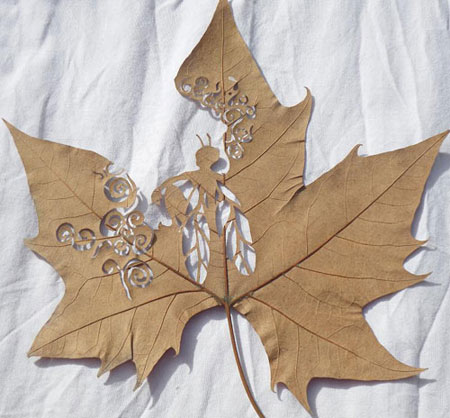 Leaf Cut Art by Lorenzo Durán
