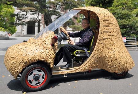 Rethinking bamboo