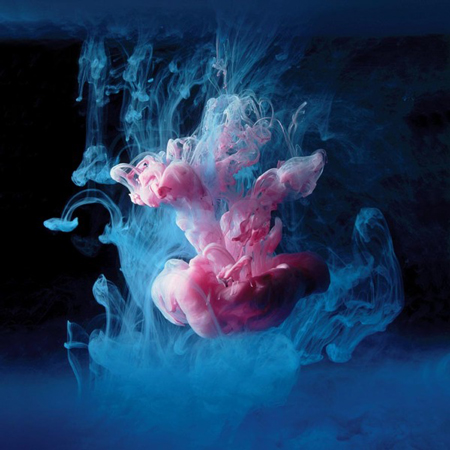 Underwater digital photographs by Mark Mawson