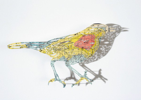 Cartographic Birds and Plants by Claire Brewster