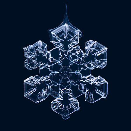 Macro photographs of snowflakes