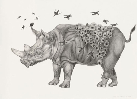 Drawings by Tara Tucker