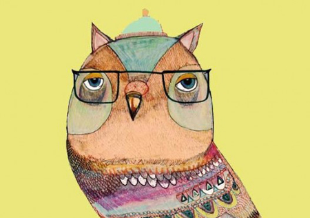 Owl illustrations by Ashley Percival