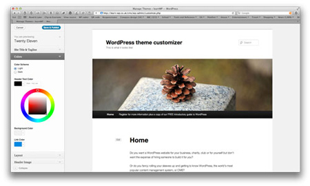 wordpress_theme_customizer