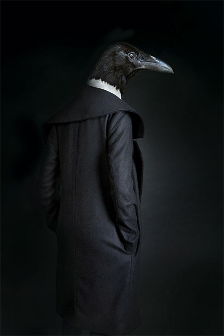 Well-dressed animals photography