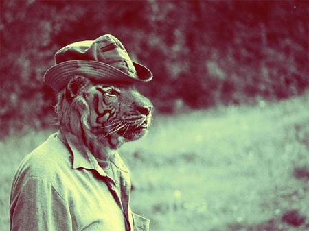 animal-dressed-1