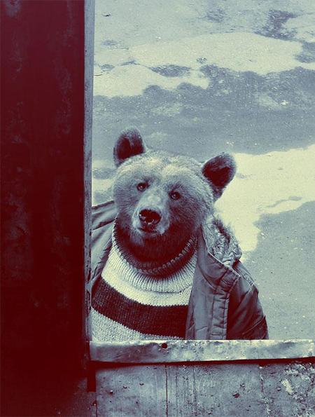 animal-dressed-2