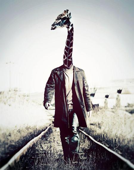 animal-dressed