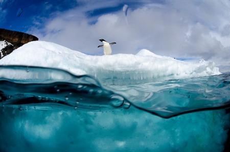 antartic-photo-1