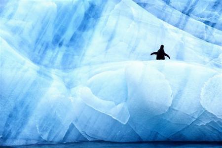 antartic-photo-3
