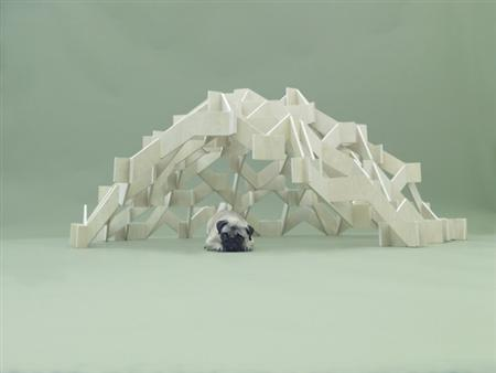 architecture-for-dogs-1