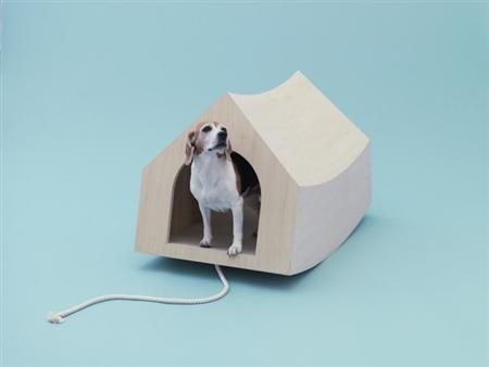 architecture-for-dogs-3