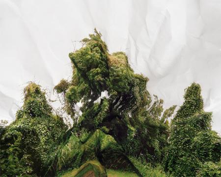laura-plageman-1