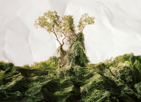 Landscapes by Laura Plageman
