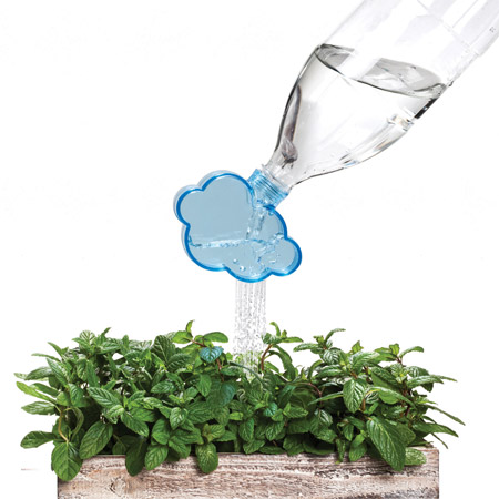 Rainmaker: the plant watering cloud