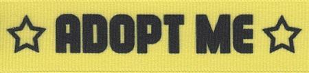 adopt-me-yellow