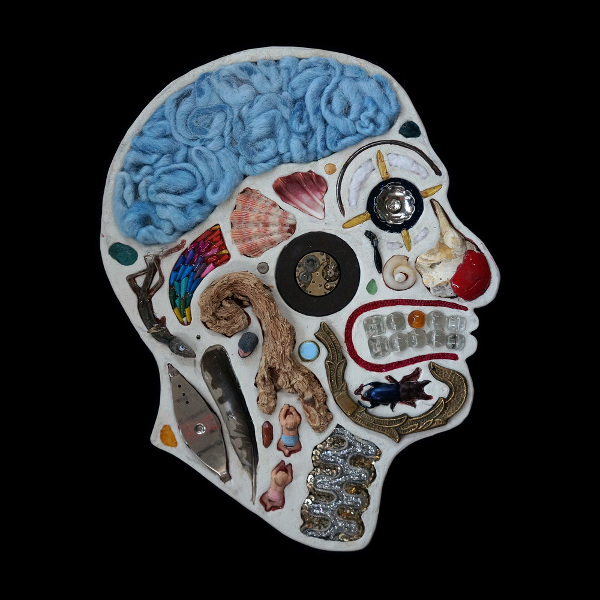 Medical diagram portraits created from found objects
