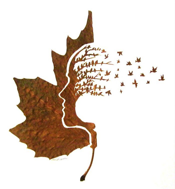 Spectacular leaf cuttings by Omid Asadi