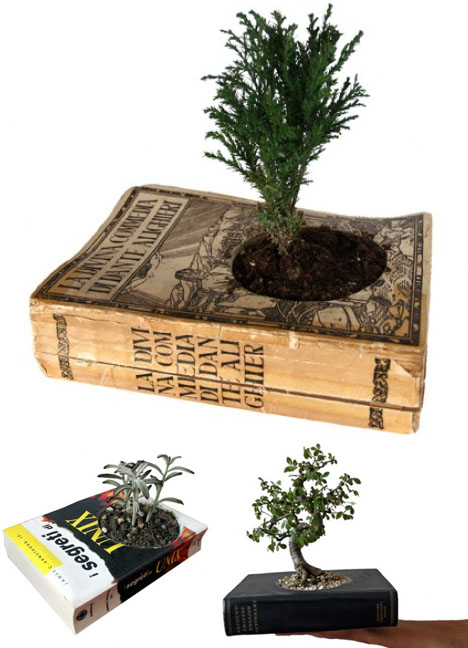 Books recycled to pot indoor plants