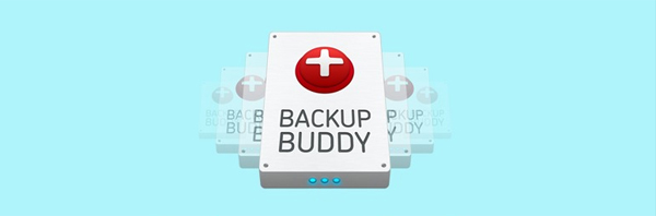 4. backup-buddy