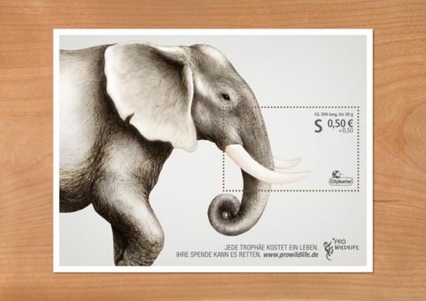 Pro-Wildlife-Campaign1-640x