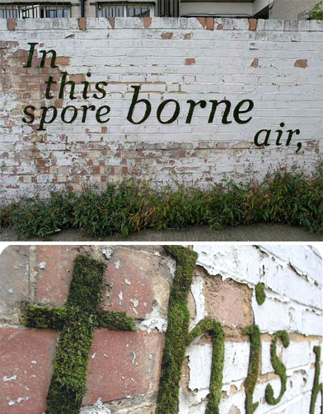 10 cool examples of typographic street art