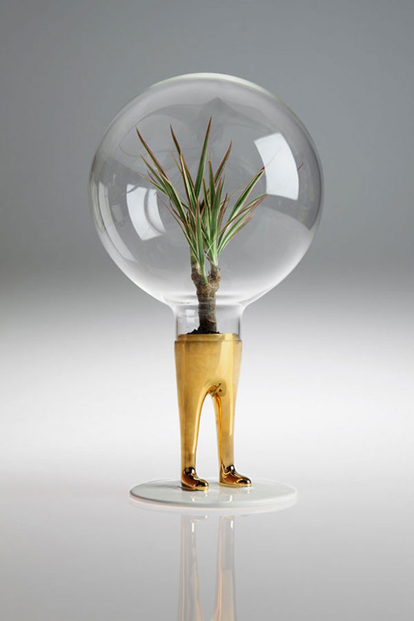 Leggy terrariums by designed by Matteo Cibic