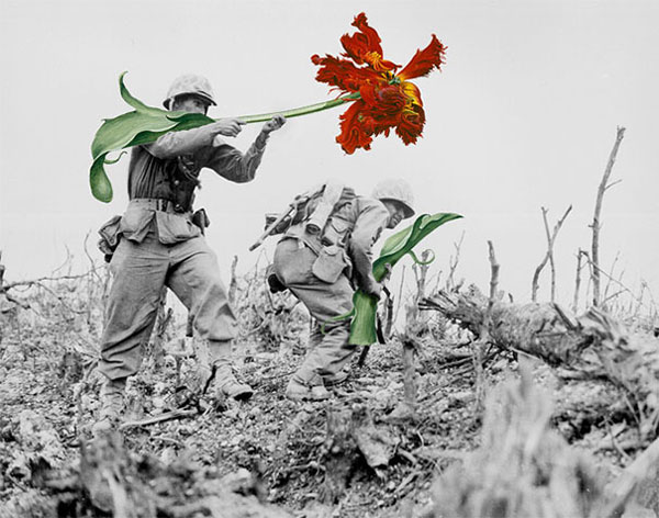 Historic photos where guns are replaced by flowers