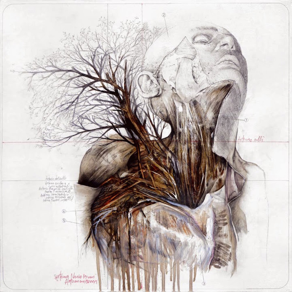 Beautiful drawings that combine the human body with nature for Beautiful drawings and paintings