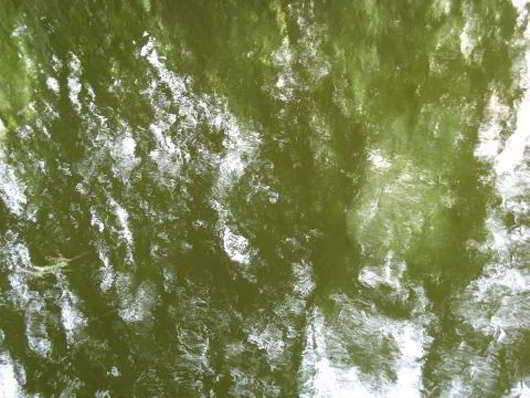Green-Water-Texture