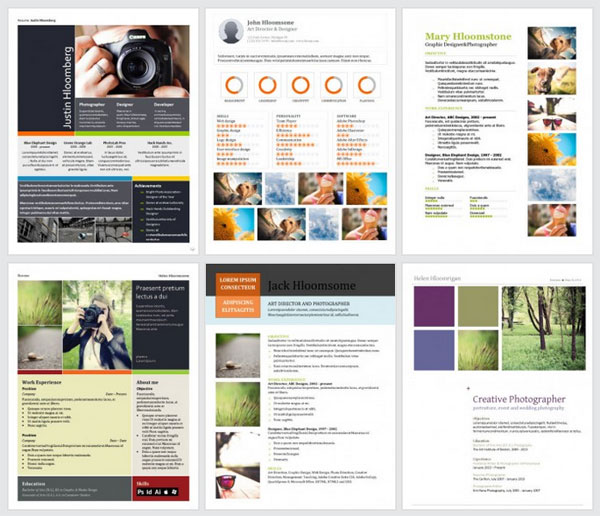 visually appealing resume - Resume Portfolio Template