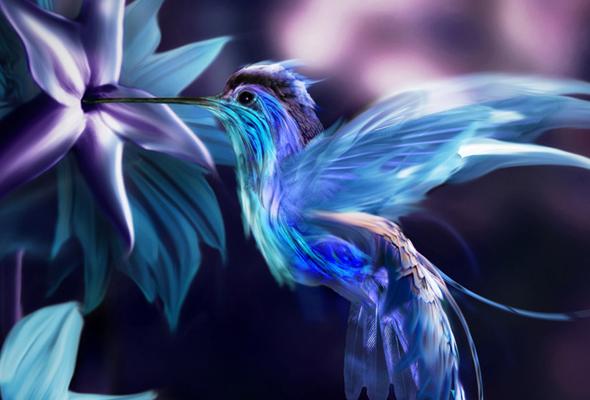 Pandora Bird