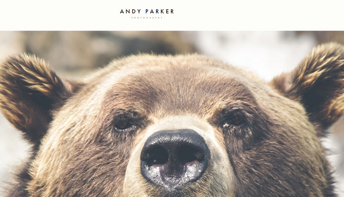 Andy Parker