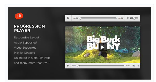 The best 5 video player plugins for WordPress