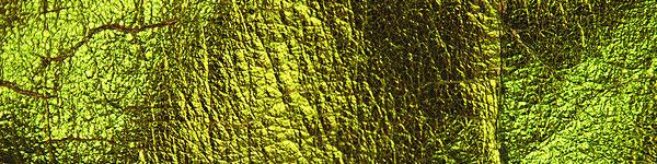 alien skin disco fabric texture
