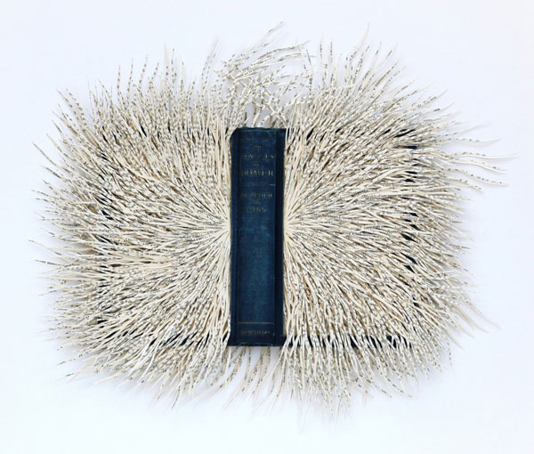 Tentacular book papercuts by Barbara Wildenboer