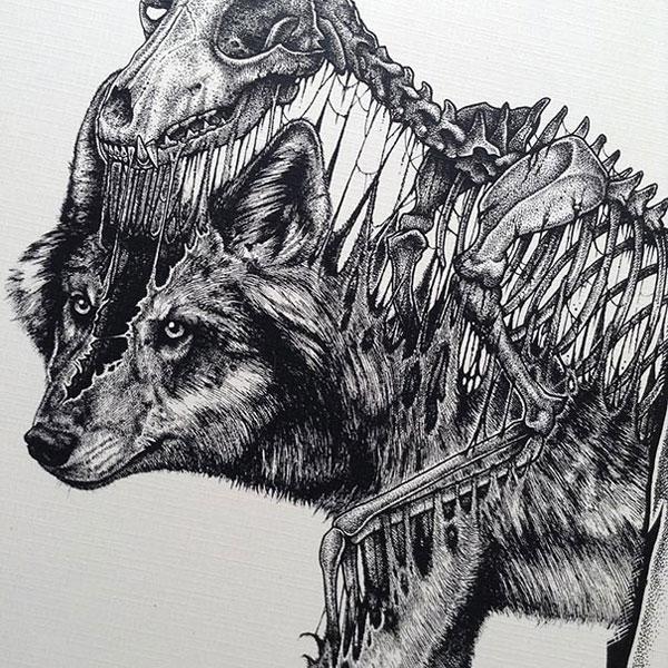 eerie-gruesome-gothic-black-white-animal-skull-art-paul-jackson-17