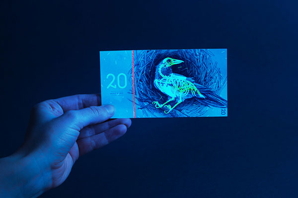 10 cool currency redesign concepts