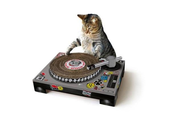 cat-dj-468x368