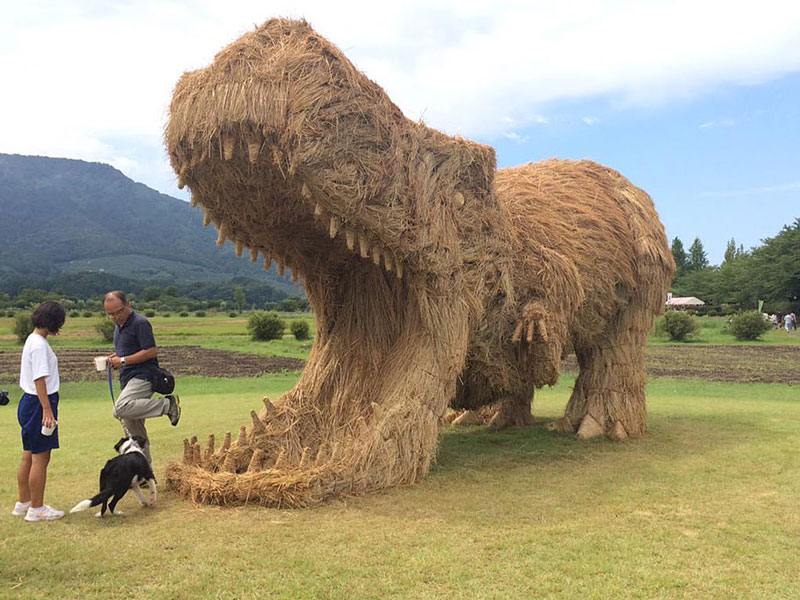 Spectacular straw dinosaurs emerged in Japanese fields