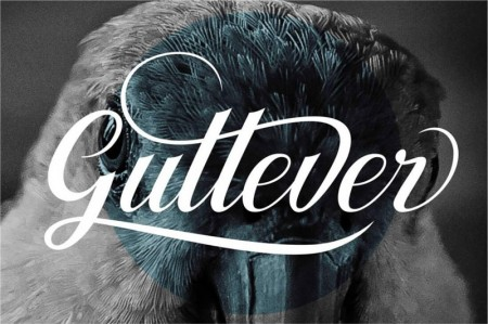 Gullever-display-1