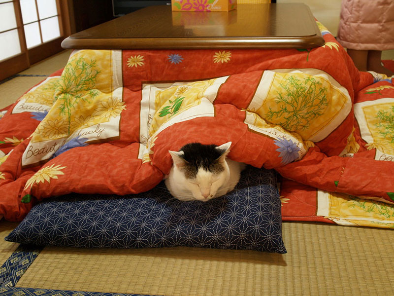 kotatsu-japanese-heating-bed-table-10